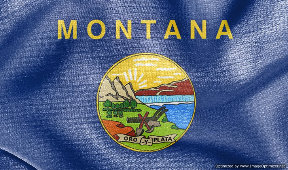 Southern Montana Electric Files for Bankruptcy